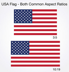 Accurate correct usa flags both common sizes vector