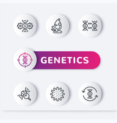 genetics line icons genetic research dna test vector image