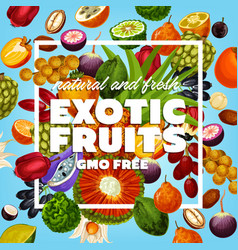 gmo free exotic fruits and berries vector image