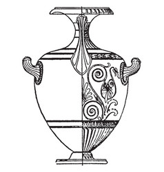greek vase is a tall wine jar with two or three vector image