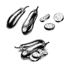 Hand drawn set of eggplant sketch vector image