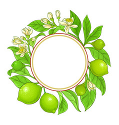 Lime branches frame on white background vector
