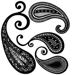 paisley floral vector image
