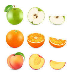 realistic cut fruits isolated on white background vector image