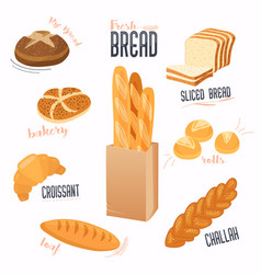 set of cartoon food bread bread buns vector image