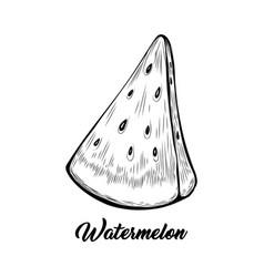 watermelon piece black and white vector image