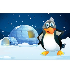 A penguin standing near the igloo vector image vector image