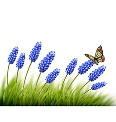 Beautiful lavender background with a butterfly vector image vector image