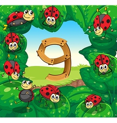 Number nine with nine ladybugs on leaves vector image vector image