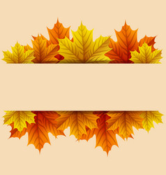 autumn leaves with blank rectangle vector image