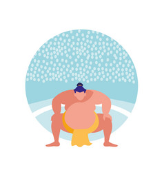 man practicing sumo avatar character vector image