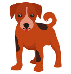 small cute puppy in flat style vector image