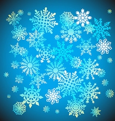 Christmas snowflakes snow winter holiday ornament vector image vector image