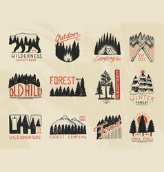 Camp logo mountains coniferous forest badges vector