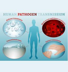 Disease transmission poster vector