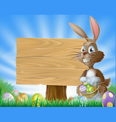 easter bunny rabbit background vector image