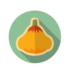 pattypan squash flat icon vegetable vector image