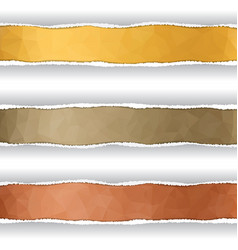 stripes in the torn off paper vector image