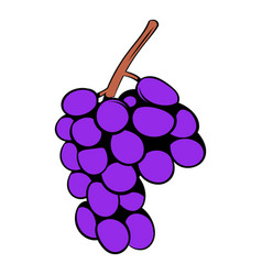 grape branch icon cartoon vector image vector image