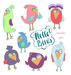 Cartoon set of funny colourful bird vector