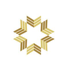 gold star arrow logo template vector image