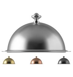 metal food cloche dome vector image