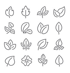 natural leaf line icons young leaves plants vector image