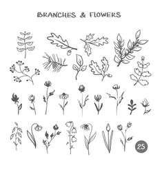 set of branches and flowers vector image