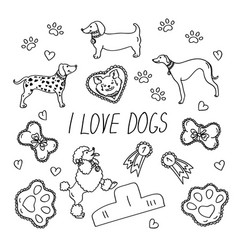 dog breeds set with the inscription i love dogs vector image
