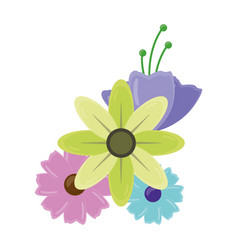 flowers leaves decoration vector image