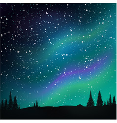Northern lights in starry sky and pine forest vector