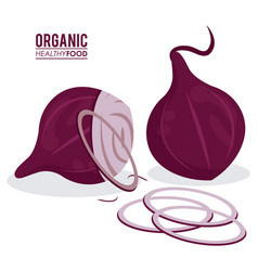 Organic healthy food onion sliced vector