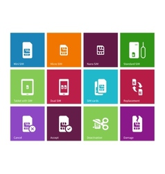 Standard and mini SIM card icons on color vector