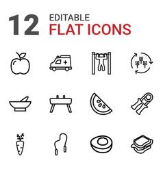 12 healthy icons vector