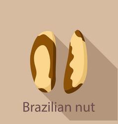 brazilian nut icon flat style vector image