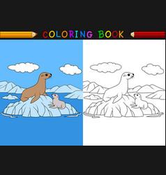 cartoon seal coloring book vector image