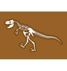 Dinosaur skeleton Ancient animal bones in ground vector image