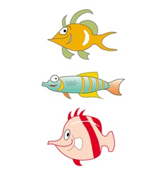 fishes tropical collection vector image