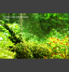 forest geometrical background with 3d hexagon vector image