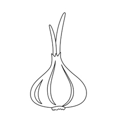 Garlic icon outline Singe vegetables icon from vector