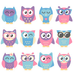 Icons of cute colorful owls isolated on white vector