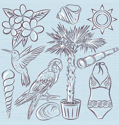 Set of summer symbols swim suit parrot vector