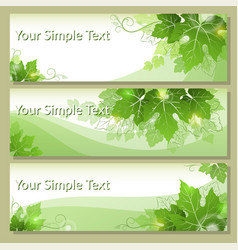 tags with grape leaves vector image