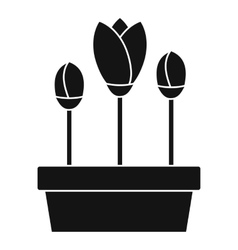 Tulips in box icon simple style vector image