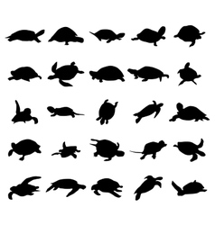 Turtle silhouettes set vector image