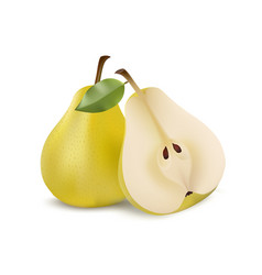 two yellow pears in modern realistic style vector image vector image