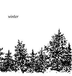 ink fir forest background vector image