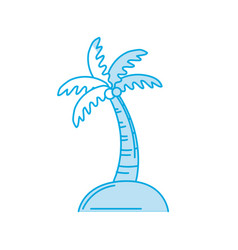 Silhouette palm with coconuts and leaves vector
