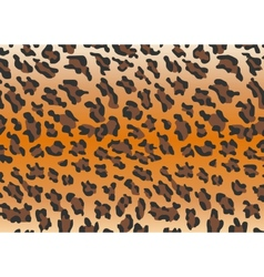 Background leopard skin vector