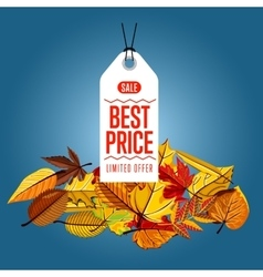 Best price label Limited offer vector
